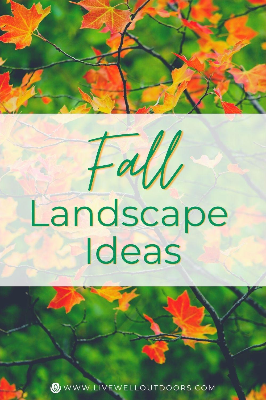 fall-landscape-ideas