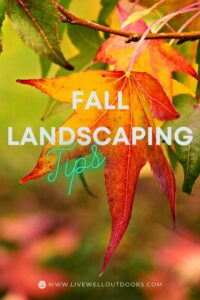 fall-landscaping-services