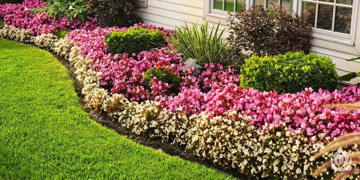 Landscape-Edging-Ideas